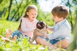 ALL IN Hotels Kinder spielen mit Hund in der Natur von Lutzmannsburg